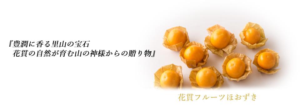 花貫フルーツほおずき